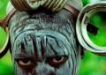 Samsara – Incrível filme – documentário sem narração nem texto