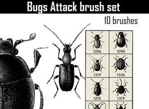 Bugs_Attack_Brush_Set_by_noelevz